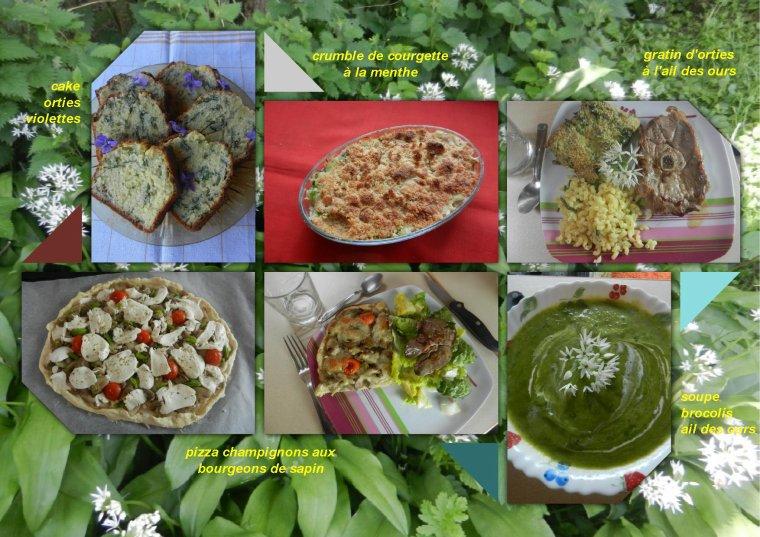 767  Cuisine de printemps