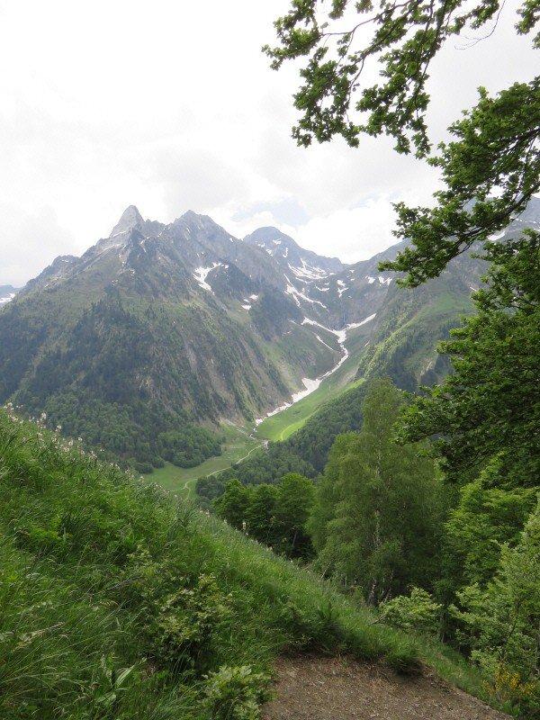 957  Randonnée au Campsaure ( 5 )