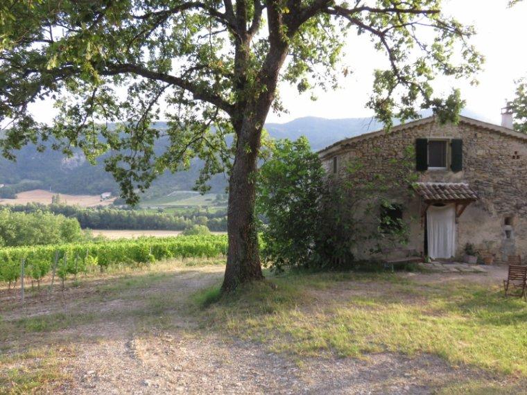 986   La maison dans les vignes