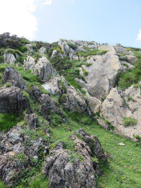 1035  Balade sur les pentes du Mont Né