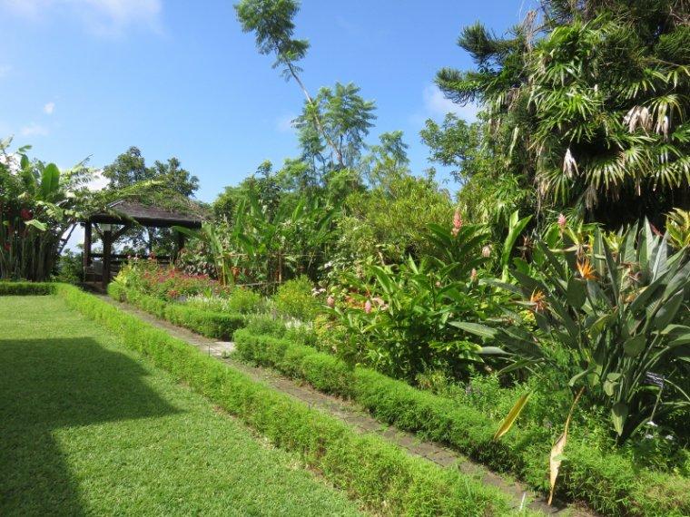 1236  Le jardin Mascarin