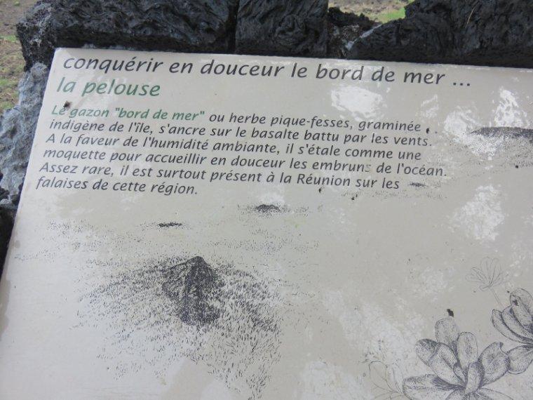 1241  Dernière balade au bord de la mer...