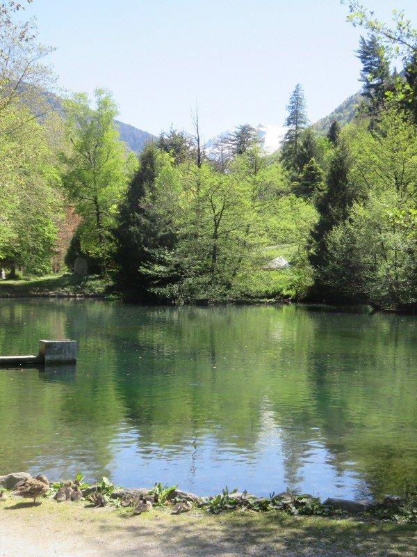 1266 Le lac des Quinconces