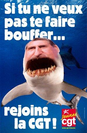 tu preferes le requin ou les copains