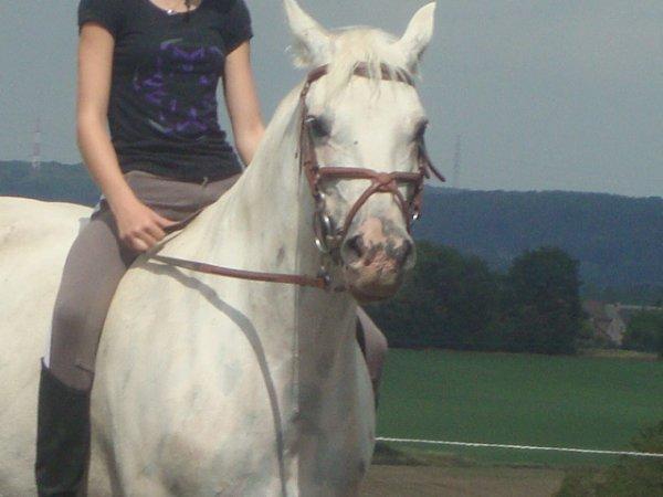Les chevaux que l on regarde au fil du temps;la criniere au vent ; ils galopent en meme direction que le soleil couchant ; elle ses encore plus que sa car ses moi qui cour en sa direction (l)