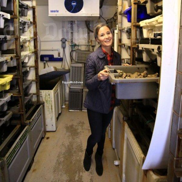 """Photoshoot / Pippa s'est rendue à l'épicerie """"Oysters"""" pour apprendre à ouvrir des huîtres à Whitstable."""