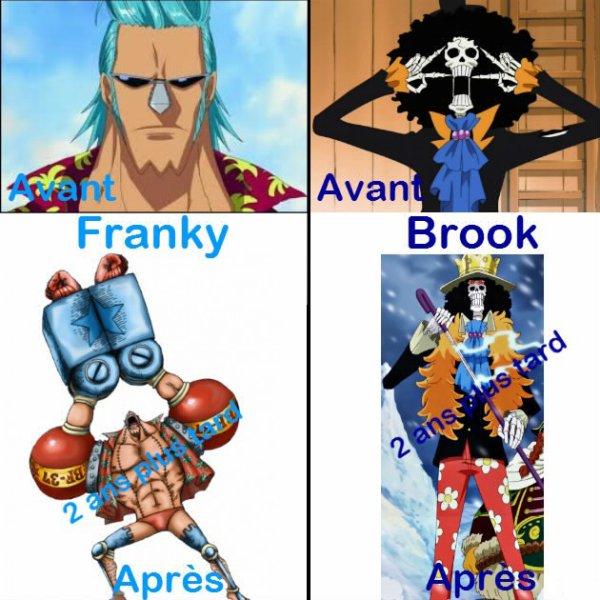 Présentation : One Piece