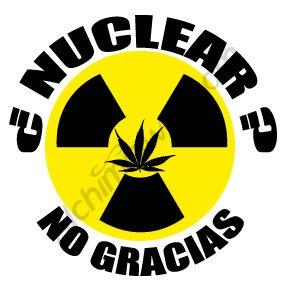 Décontaminer les terres de Fukushima avec du Cannabis ?
