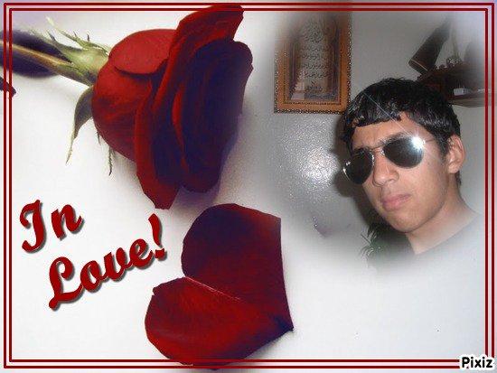 الحب وردة