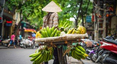Cultural Trip- Top 10 Exports in Vietnam