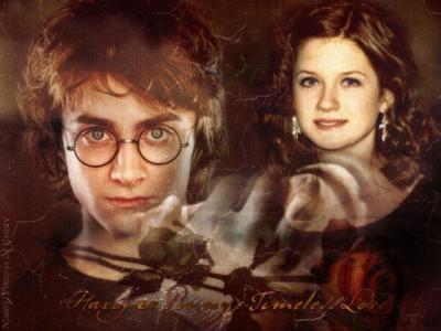 harry et ginny...une histoire d'amour qui durera pour toujours