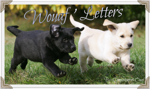 Wouaf ' Letters :