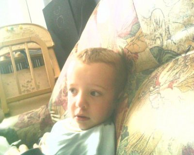 Willy mon ptit frere