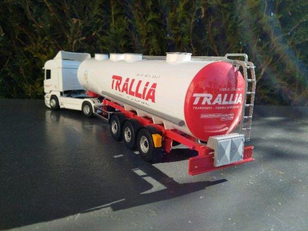 TRANSPORTS TRALLIA groupe VEYNAT
