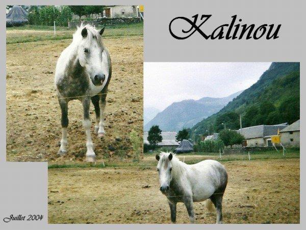 Kalinou