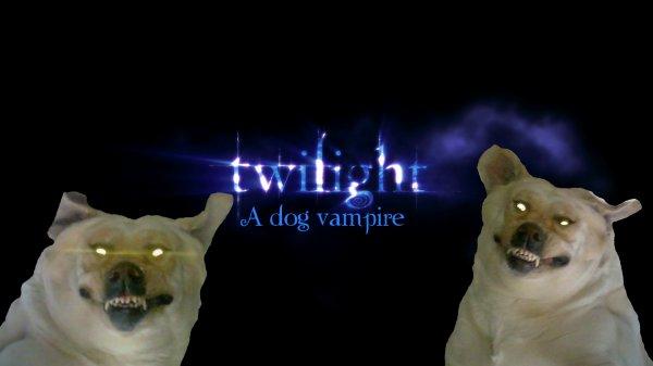Belle en vampire lol