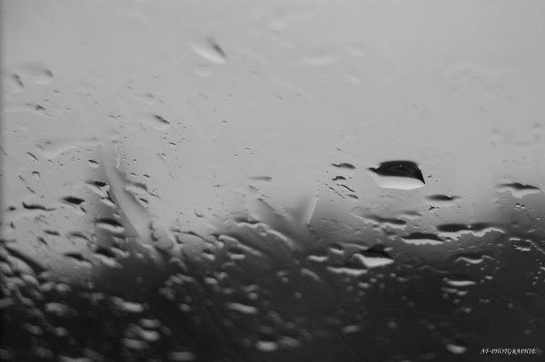 Macro gouttes de pluie,