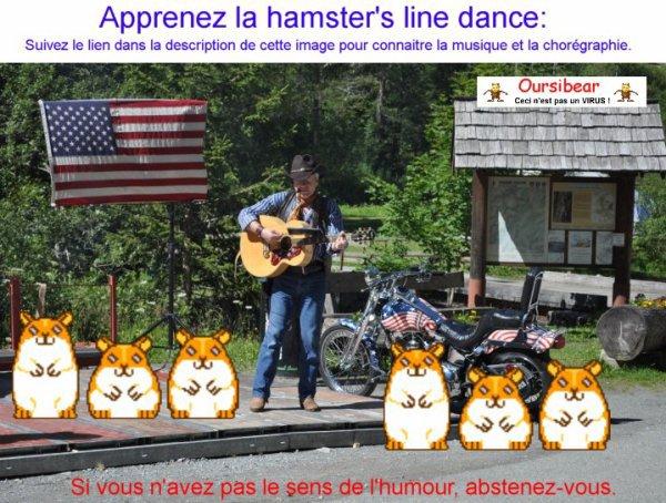 La hamster's line dance.