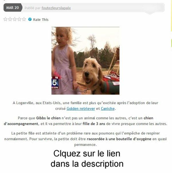 Un chien d'accompagnement aide une petite fille de 3 ans à vivre.