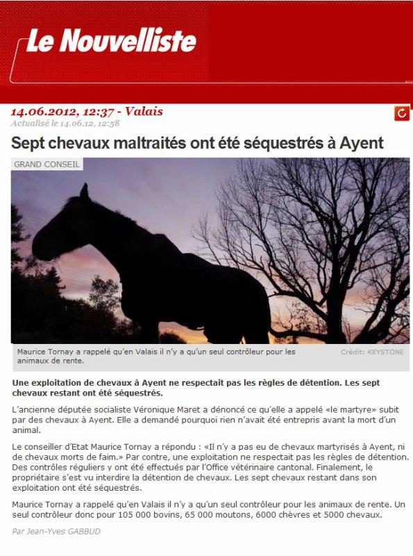 Chevaux martyrs.
