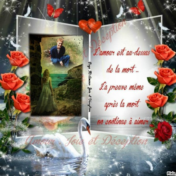 Merci Mon Frere Blog De Fleurseternelles