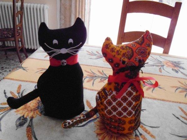 mon chat Fyvette et son fiancé