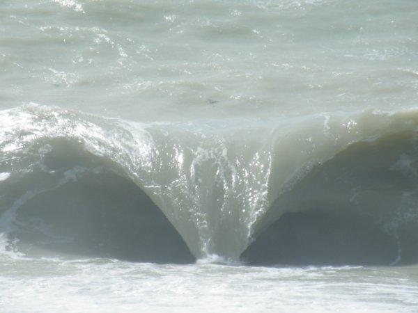 """ainsi va la """"vague """""""