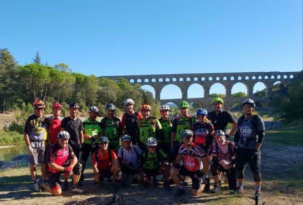 Les mouflons  au pont du Gard