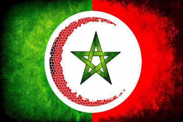 maroc et aleger
