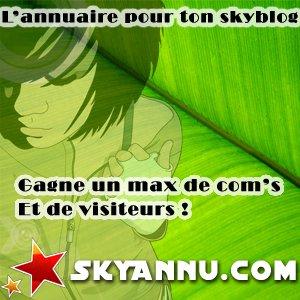 skyannu.com