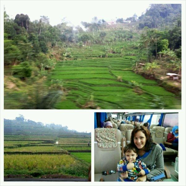 Le train pour Jakarta arrivera en gare ...