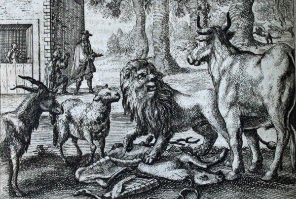 La génisse, la chèvre, et la brebis en société avec le lion