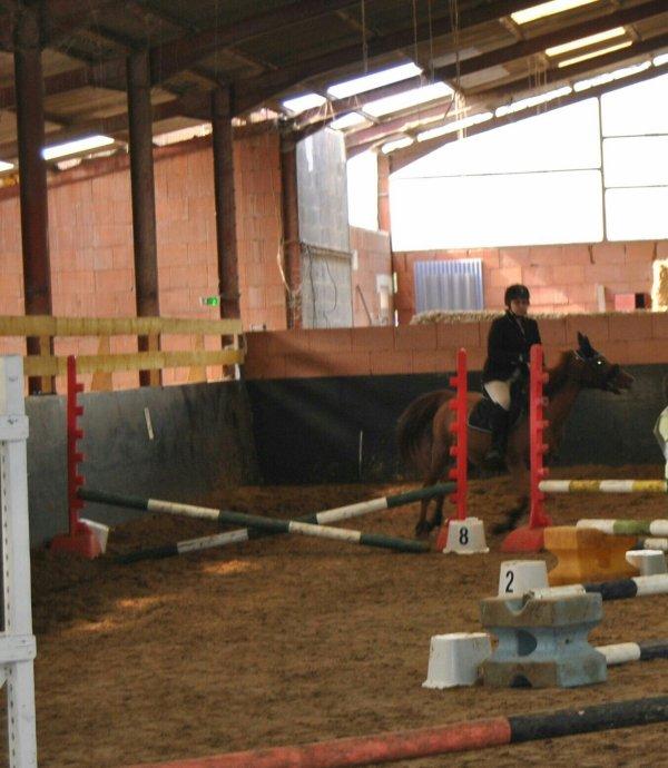 Concours de la fete du cheval ∞