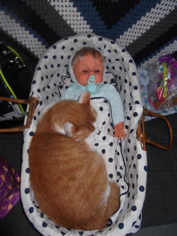 Bébé Sebino, taille naissance.