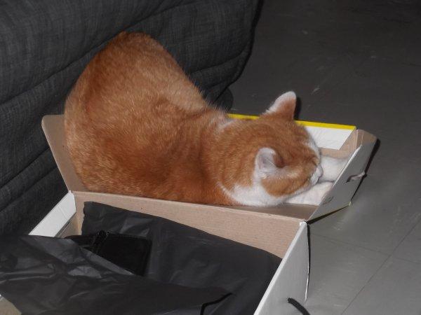 Claude fait les soldes, Slouby hérite du carton...
