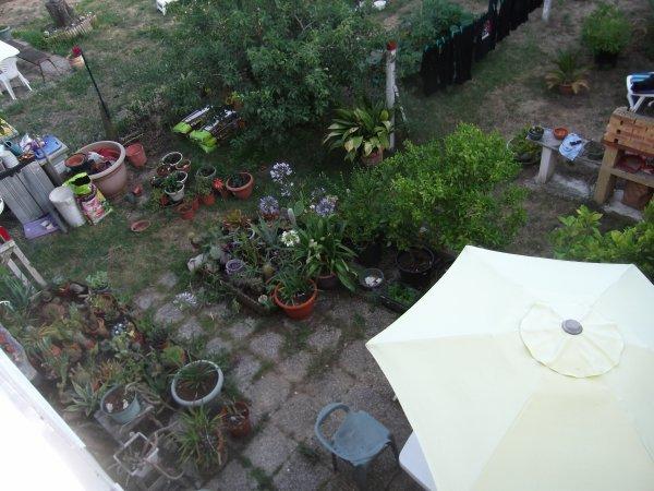 jardin vu du ciel