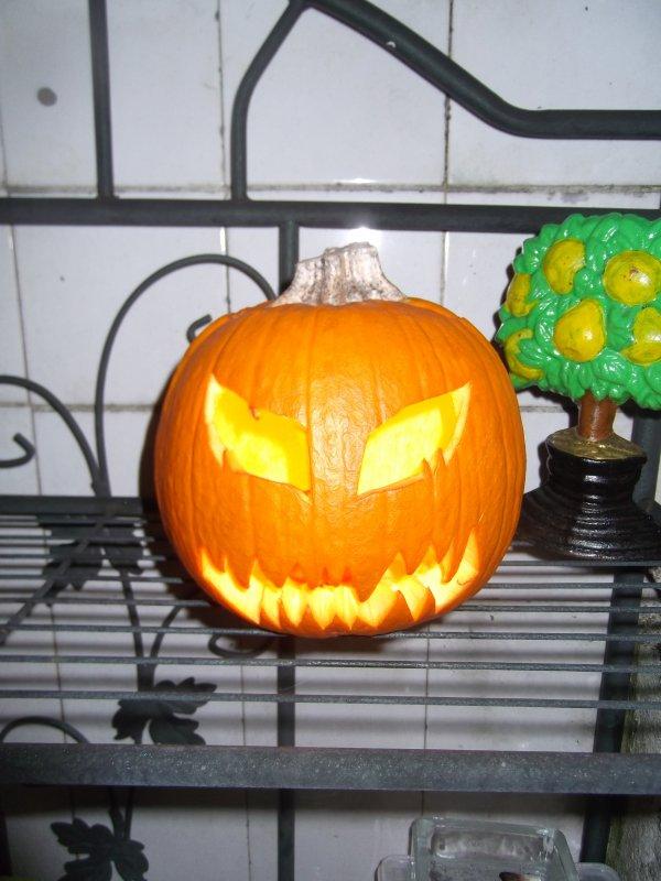 Citrouilloux halloween