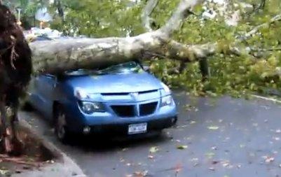 Un orage fait 1 mort à New York.