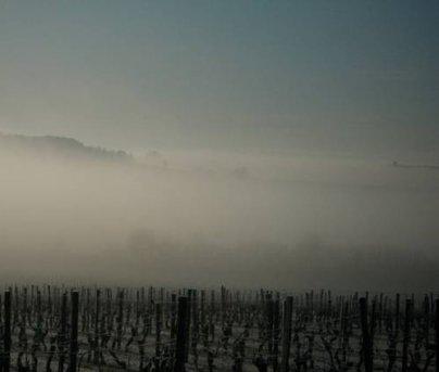 Premières gelées en plaine ce Samedi 18 septembre matin !