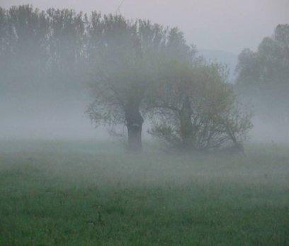 Brouillards tenaces du Centre au Nord-Est ce Jeudi 14 octobre matin.