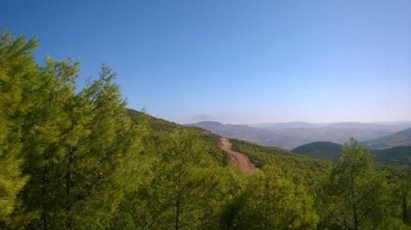 الجزائر Algérie
