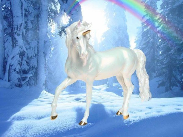 chevaux,dauphins,licorne