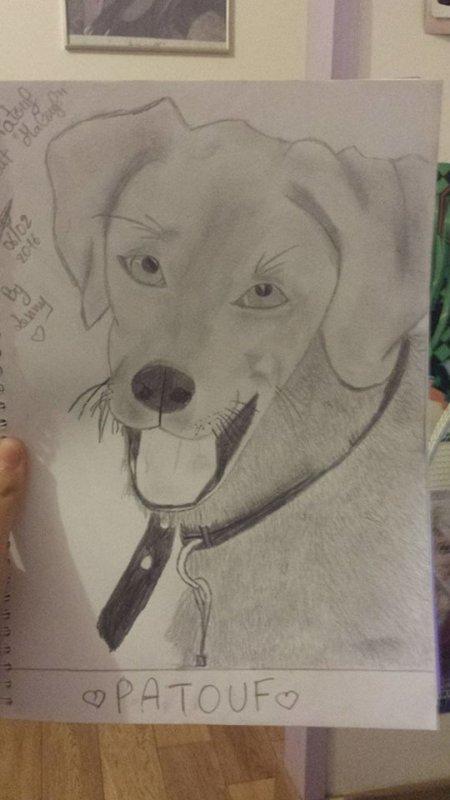 Dessin de mon défunt chien Patouf.. RIP.