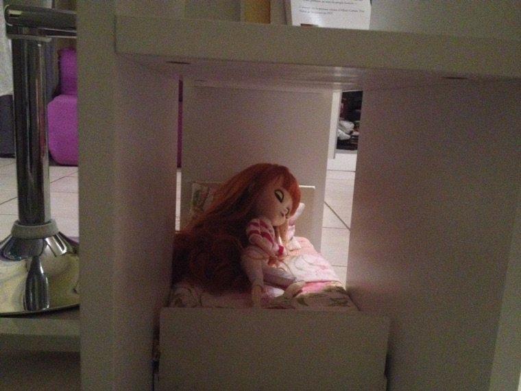 Amy a squatté les étagères de mon bureau !!!