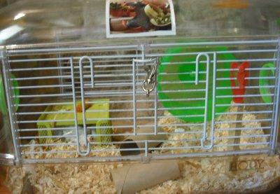 sa villa (ou cage)
