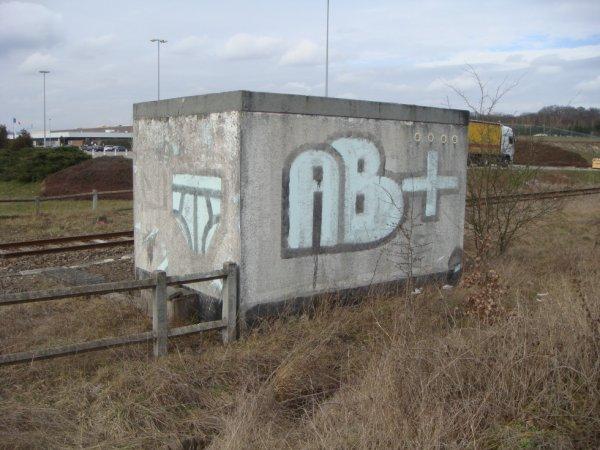 MOOLBEAT AB+