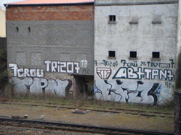 7 CROU TRIZO 7 21C MOOLBEAT AB+ TPN 7 TPN LFO