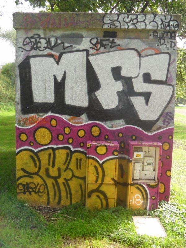 MFS CREW SMILE