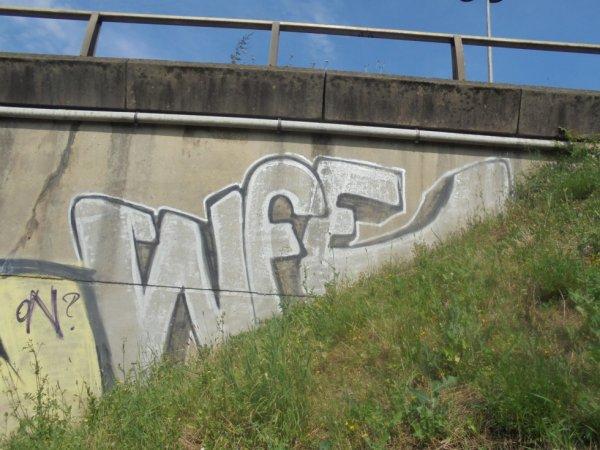 WFE CREW