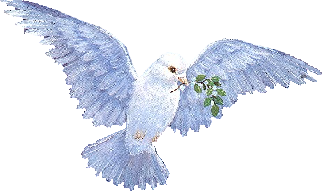 la paix dans le monde